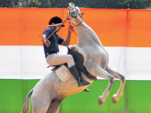 Mounted horse goes berserk during R-Day