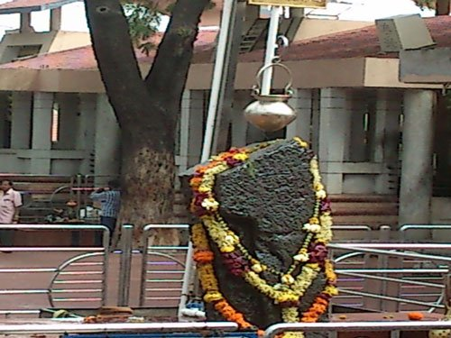 Activists seek CM's intervention in Shani temple row