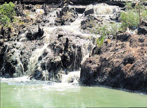 Bellandur villagers seek reprieve from lake-linked health hazards