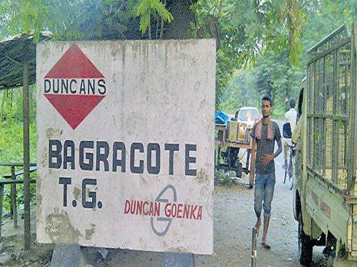 Centre asks Tea Board to take over Duncan gardens