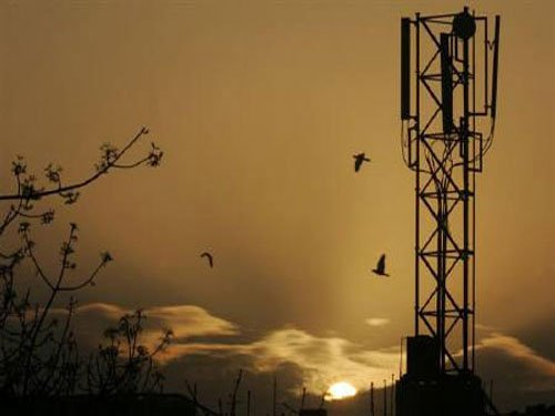 Energy from cellphone towers may trigger pain in amputees