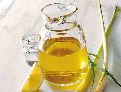 Combating Zika: State to distribute lemon grass oil to pregnant women