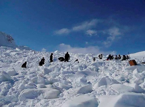 Siachen bravehearts: Over 150 soldiers and two canines