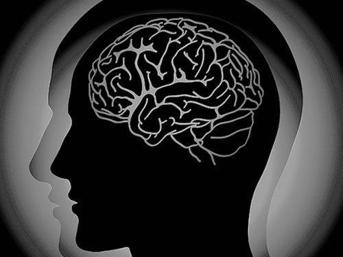 3D 'mini-brains' developed in lab
