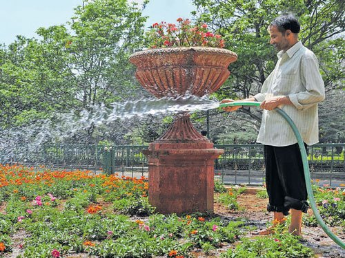 Treated water may quench parched parks in City
