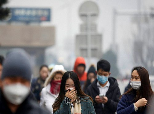 Chinese face growing cancer risk from dioxin: research