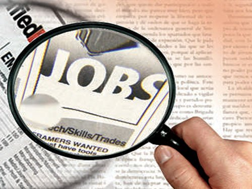 Job opportunities in public sector have shrunk: Govt