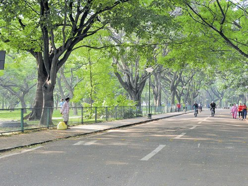 Can Cubbon Park be free of traffic on all days?