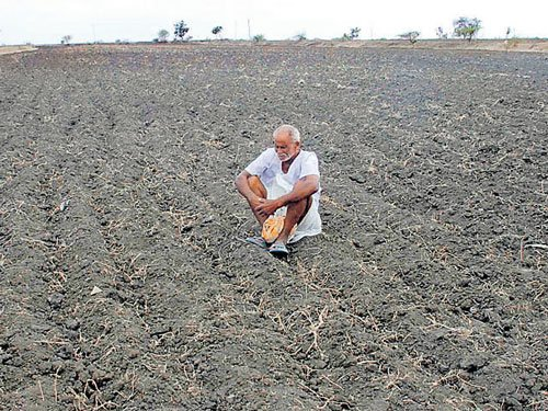 State's agricultural production takes a severe beating due to drought