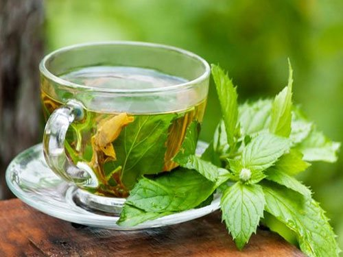 Peppermint tea may help improve your memory: study