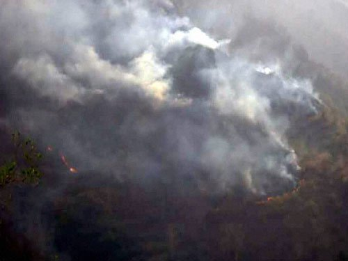 Uttarakhand forest fires show signs of abating