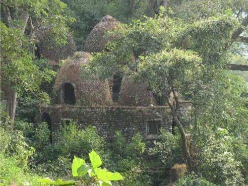British couple roughed up at Mahesh Yogi's ashram in Rishikesh