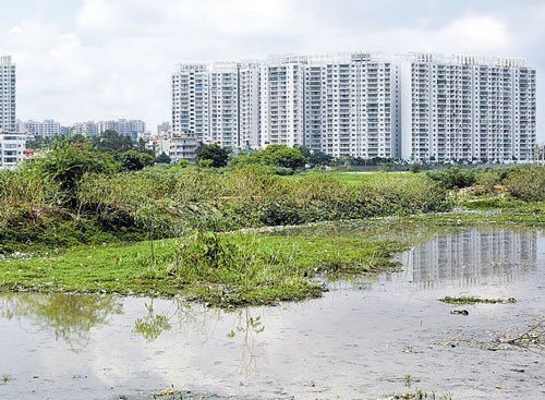 Palike reclaims encroached land at 2 lakes