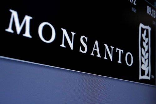 German pharma giant Bayer in talks to buy Monsanto
