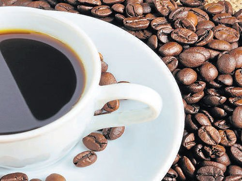Political appointee to head coffee board