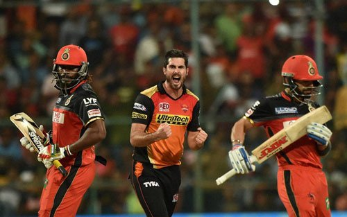 Sunrisers beat RCB by 8 runs to win thrilling IPL finale