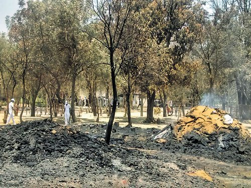 Mathura clash toll goes up to 29, Aligarh Commissioner starts probe