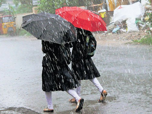 Normal and excess rainfall in 89 per cent of the country: IMD