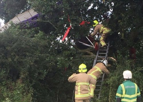 Pilot, 91, stuck in a tree after microlight crash in UK