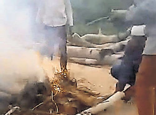 5 minor boys throw 3 pups into fire, burn them alive