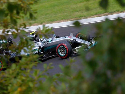 'Lucky' Rosberg takes pole