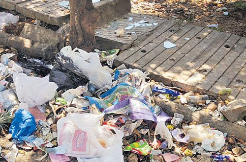 Ward-level squads to monitor waste management from Aug