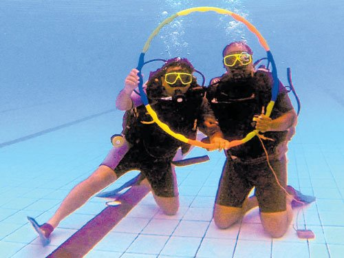 The thrills and spills of diving