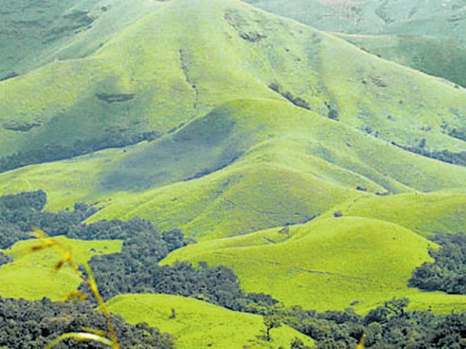 Reduction in forest area has led to deficit rainfall, says IISc study
