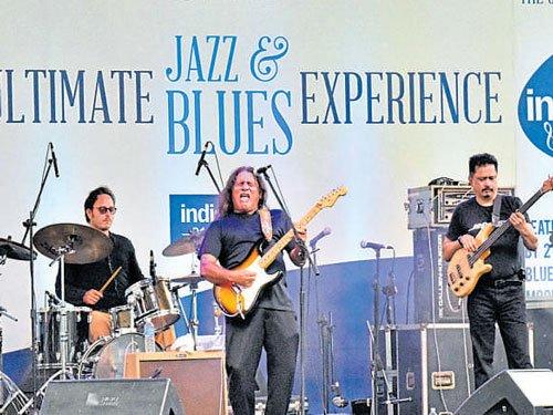 Global bands enthral crowds at jazz & blues fest