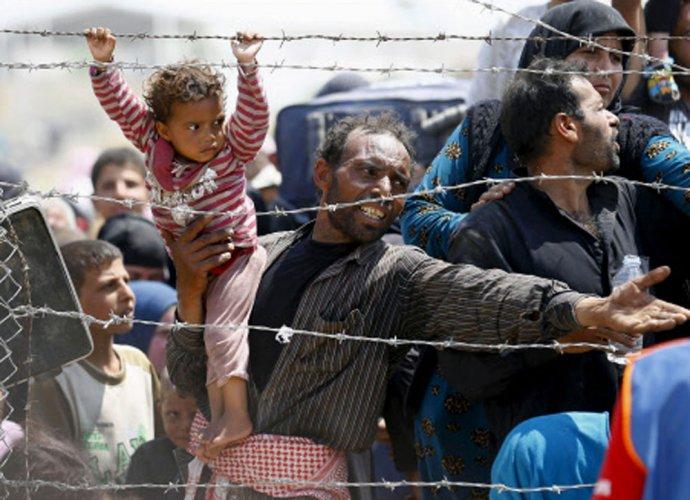 Fewer than half of world's refugee children in school: UN