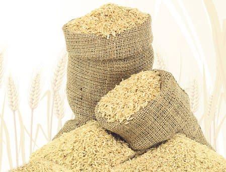 Record grain output this kharif season