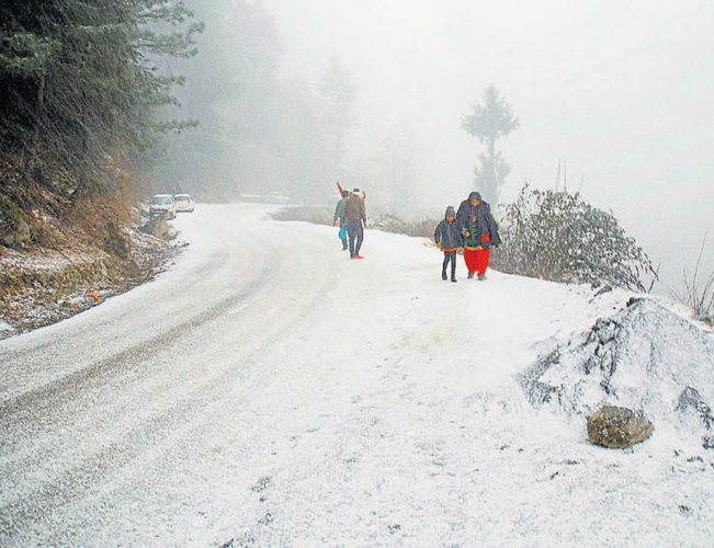 Cold wave continues in north India, fog disrupts rail, road traffic