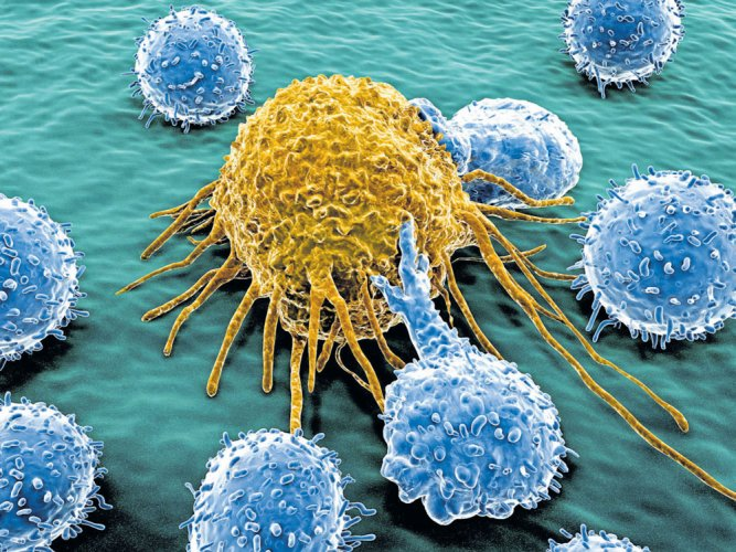 Revolutionising cancer treatment