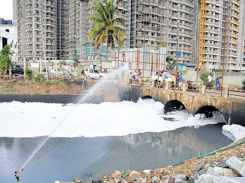 Now, a portal to check if house stands on raja kaluve