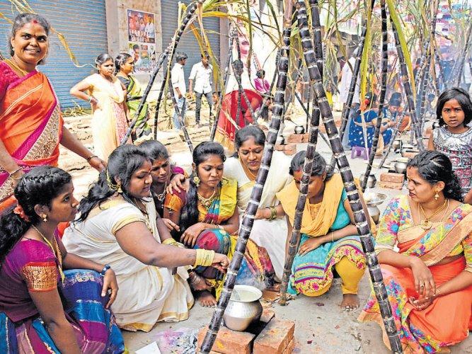 Prayers, celestial event mark Sankranthi