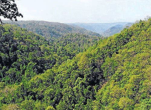Despite pressure from greens, govt not keen on reviving Western Ghats Task Force