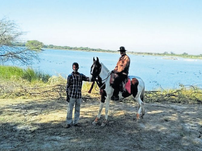 Warm gesture for feathered friends in Rajasthan