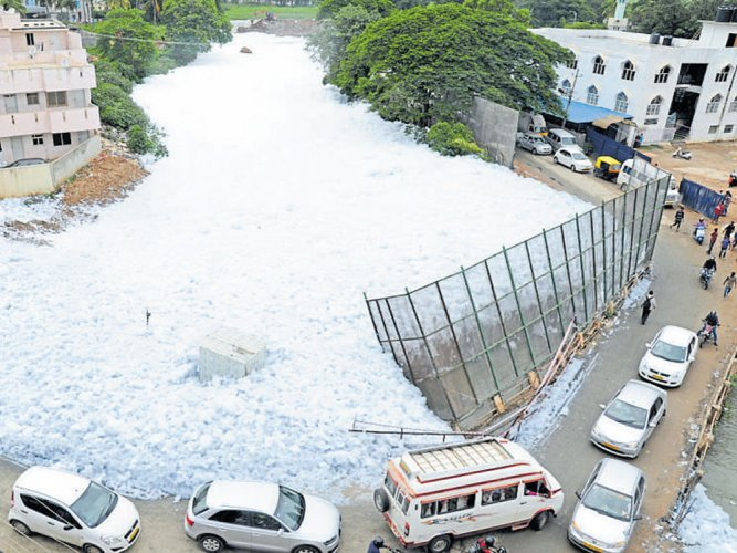 Panel comes up with action plan to revive Bellandur lake