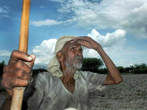 SC to examine policy to stop farmers' suicides