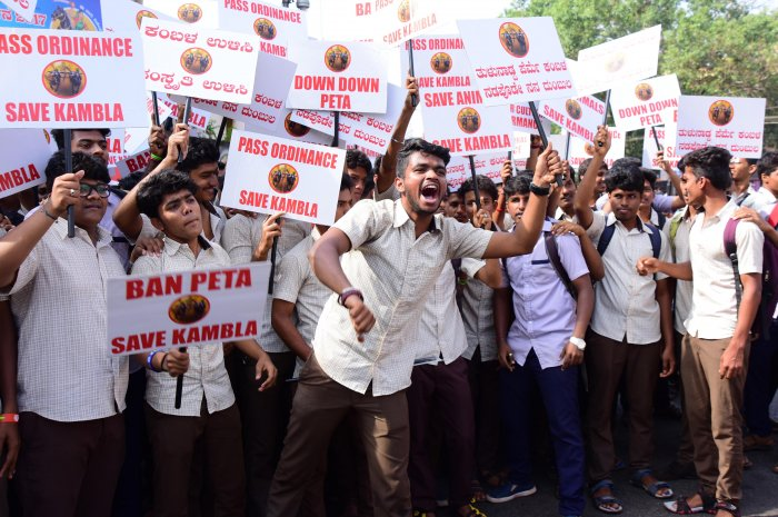 Protests against ban on Kambala intensify in Dakshina Kannada
