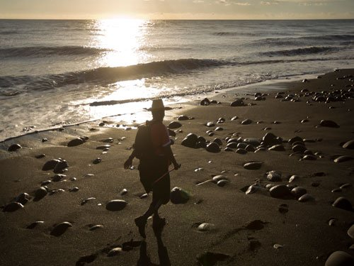 Ancient 'lost continent' found lurking under Indian Ocean