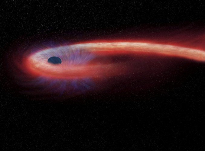 Massive black hole spotted binging on star for a decade