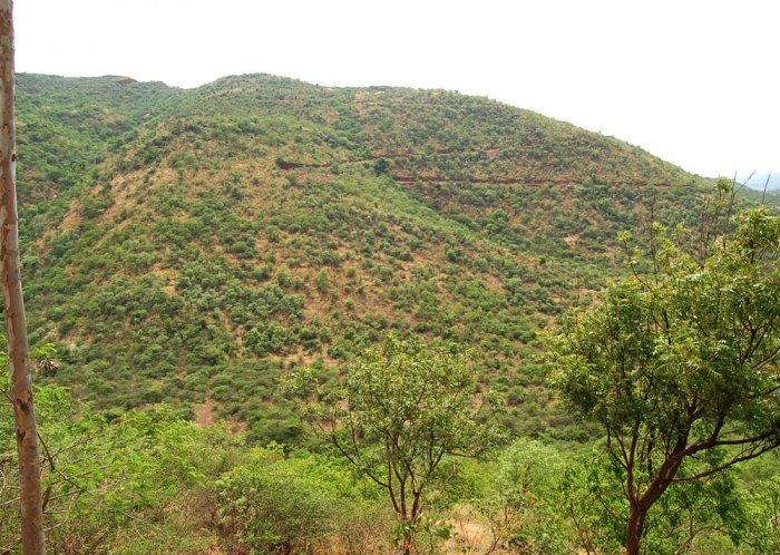 Govt removed Kappatgudda's conservation reserve tag at mining firm's behest:BJP