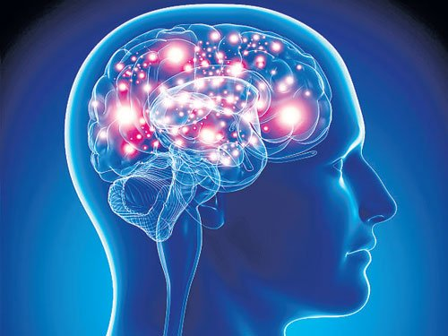 Combination of drugs may help cure brain cancer