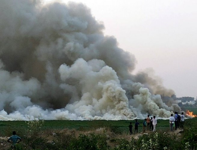 Fire engulfs Bellandur lake, this time from trash heap