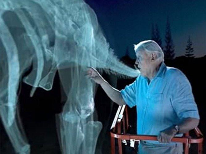 Virtual reality, 3D printing tech may let you pet dinosaurs!