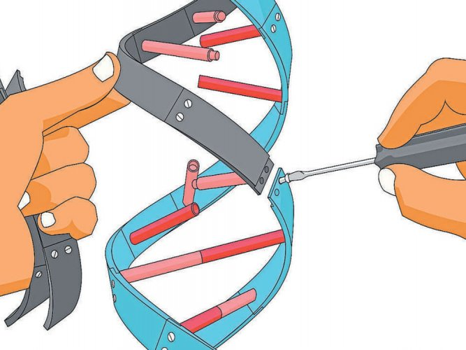 Gene editing: an ethical minefield
