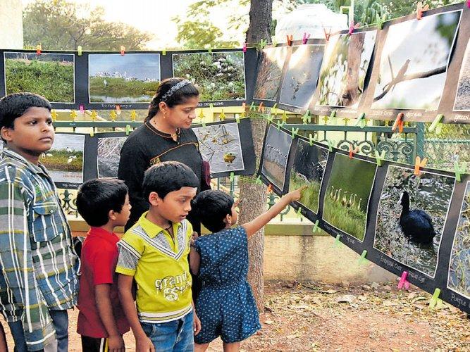 Desilting of Kukkarahalli lake draws ire of eco-activists