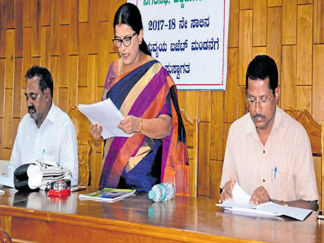 CMC to focus on water supply, hygiene in 2017-18
