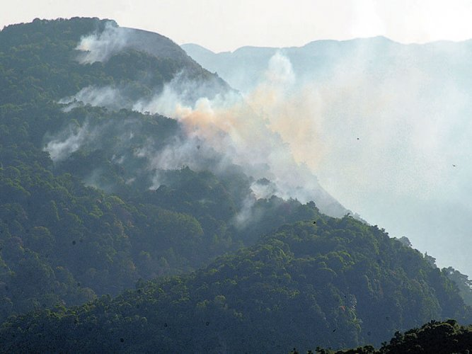 Fire at Western Ghats consumes huge vegetation